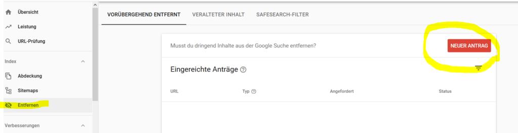 Grund 1 Seite erscheint nicht in Google - Antrag auf Entfernung des Urls